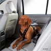 Ремень безопасности для собак Hunter